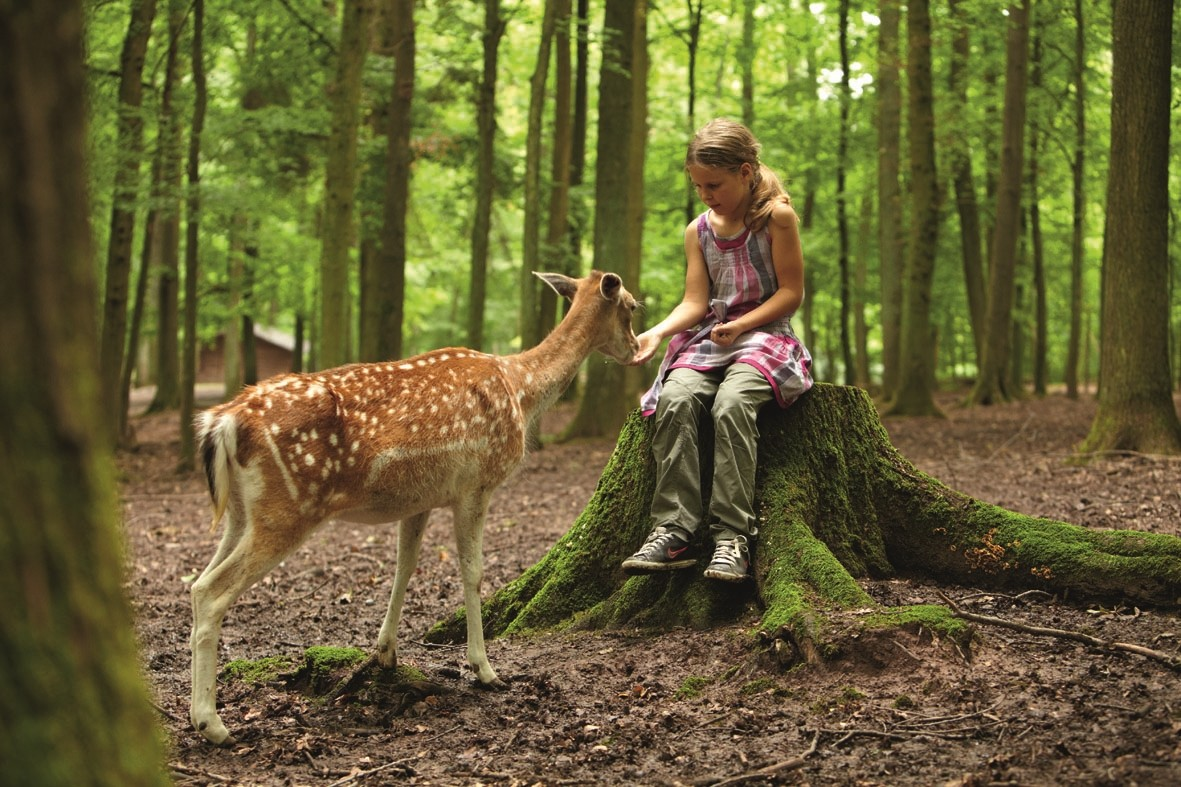 Wildparadies-Pass Kinder 4-11 Jahre