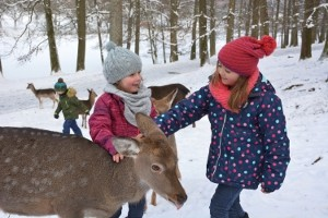 Wildparadies-Pass Winter Kinder 4-11 Jahre